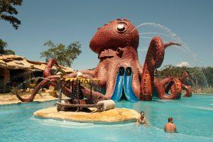 octopus2-c2b46075c2